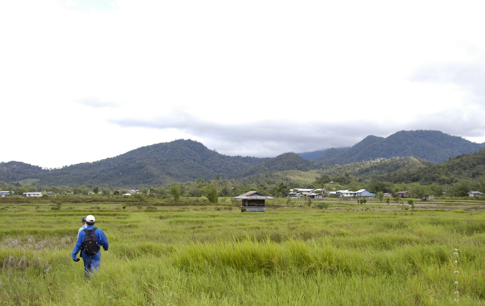 The Land of Wind Bario Sarawak